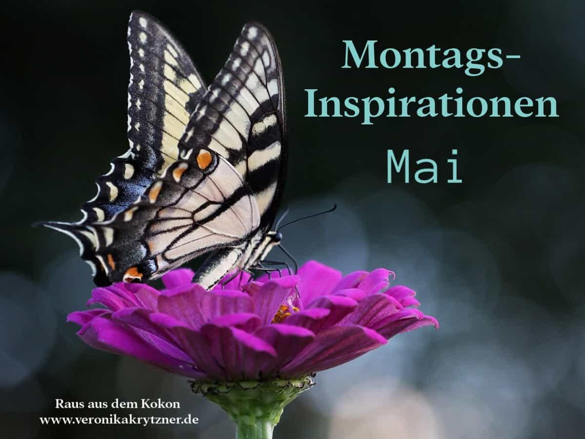 Montagsinspiration,Inspiration, Persönlichkeitsentwicklung, Selbstwert
